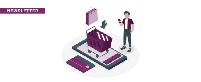newsletter pagos aplazados ecommerce